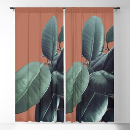 Ficus Elastica #17 #AutumnLeaf #foliage #decor #art #society6 Blackout Curtain