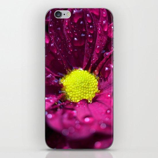purple bloom II iPhone Skin