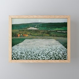 Flower Meadow in the North, Harald Sohlberg, 1905 Framed Mini Art Print