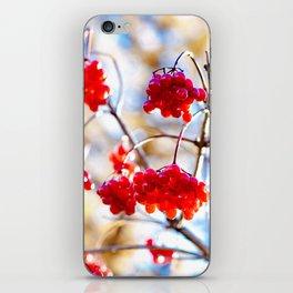 Arrowwood Berries iPhone Skin