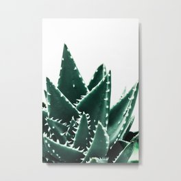 Green Cacti Metal Print