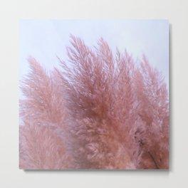 Pink Pampas Metal Print