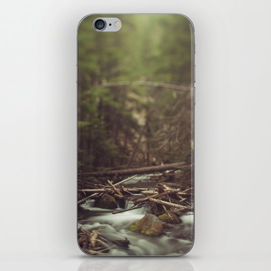 Cold Spring Creek iPhone & iPod Skin