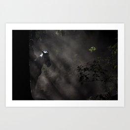 Light Rider Art Print