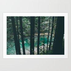 Siouxon Creek Art Print