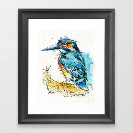 Regal Kingfisher Framed Art Print