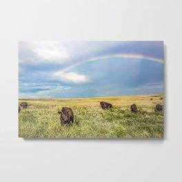 Rainbows and Bison - Buffalo on the Tallgrass Prairies of Oklahoma Metal Print