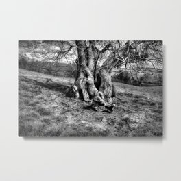 A Tree in a Pool of black and white Light Metal Print