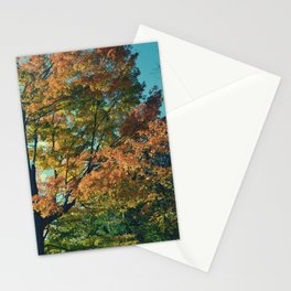 BEAUTY OF FALL II Stationery Cards