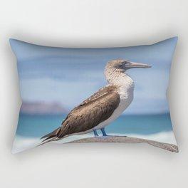 Galapagos blue footed booby bird photography Rectangular Pillow