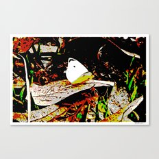 Cabbage White Butterfly Comics Canvas Print