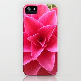Rosé Tea Rose iPhone Case