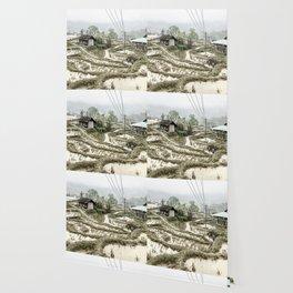 Beautiful foggy SaPa Vietnam rice fields cold winter Wallpaper