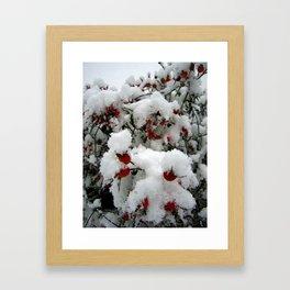 Snow Berries Framed Art Print