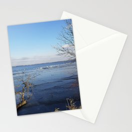 More Than Seven Swans A Swimming And A Sitting On The Second Day Before Christmas Stationery Cards
