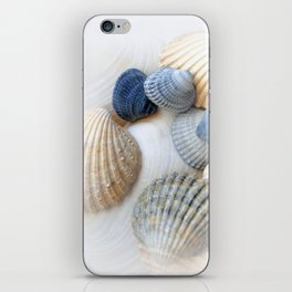 Just Sea Shells iPhone Skin