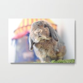 Bunny with circus tent Metal Print