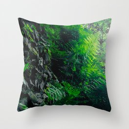 Rocks and Ferns Throw Pillow