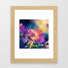 Colorful Days Framed Art Print