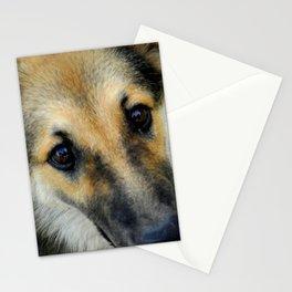 Up close & dog Stationery Cards