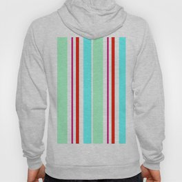 Stripes in colour 2 Hoody