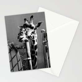 Giraffe behind Fence Stationery Cards