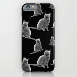 Gray British Shorthair Cat Pattern iPhone Case