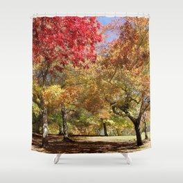 Autumn Sunshine Landscape Shower Curtain