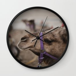 Camel at Beduoin Tent in The Negev, Israel Wall Clock
