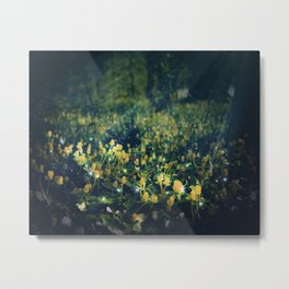 The Magic and the Moonlight Metal Print