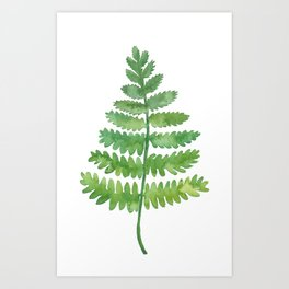 Big Fern Art Print