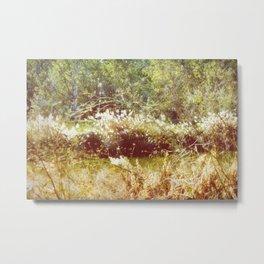 Romantic nature of nature Metal Print