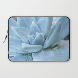 Succulents of the Channel Islands // Scorpion Laptop Sleeve