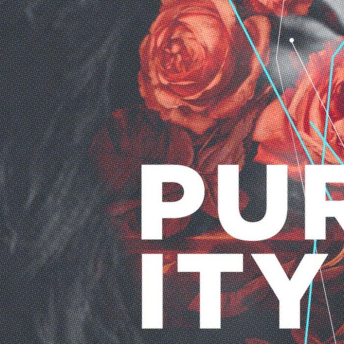 Purity Leggings
