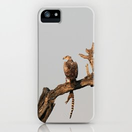 Hawk Eagle with its Catch iPhone Case