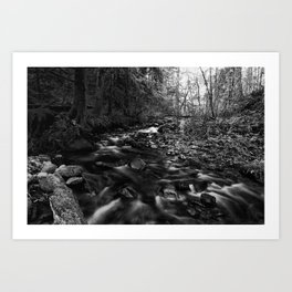 Oregon Stream in Black & White Art Print