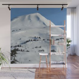 Back-Country Skiing  - VI Wall Mural