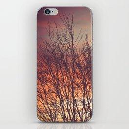 Morning Beauty iPhone Skin