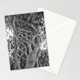 Tangled strangler fig Stationery Cards