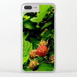 Almost Time for Rasberries Clear iPhone Case