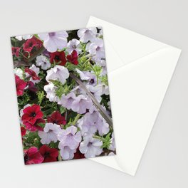 Cascade Of Petunias Stationery Cards