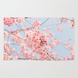 Blossoms in Spring Rug