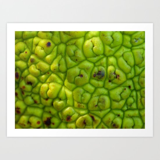 Hedge Apple Skin Art Print