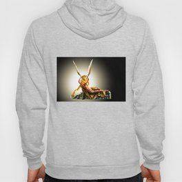 CUPID AND PSYCHE Hoody
