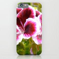 Hibiscus in Maui iPhone 6s Slim Case