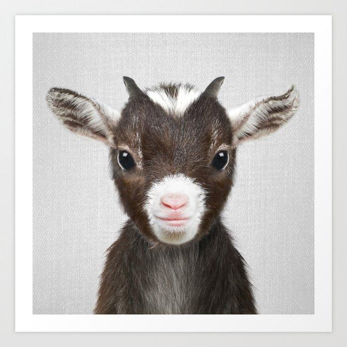 Baby Goat - Colorful Kunstdrucke