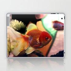 freshwater Gold fish Laptop & iPad Skin