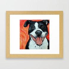 Black & White Adorable Pit Bull  Framed Art Print