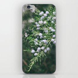 Berryful Pine iPhone Skin