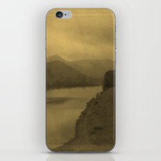 little pine iPhone & iPod Skin